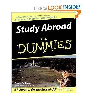 year abroad essay