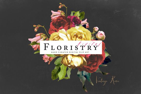 Digital Floristry - Vintage Rose by CreateTheCut on @creativemarket