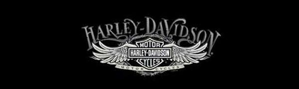 Harley-Davidson Decals | Harley Davidson Wire Wing Rear Window Decal