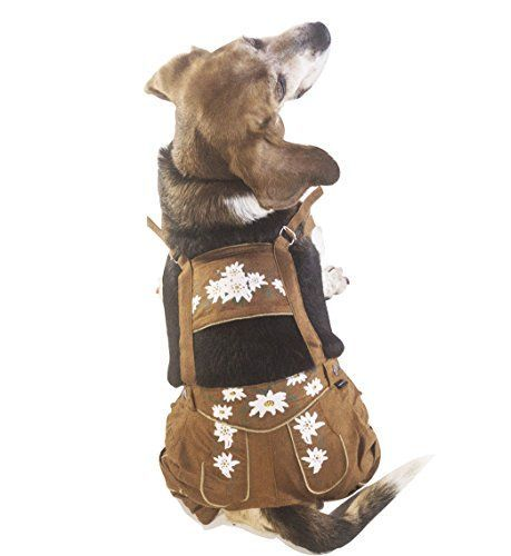 EINSZWEIDOG Oktoberfest German Dog Lederhosen, Multiple S... https://www.amazon.com/dp/B01LIC8EI8/ref=cm_sw_r_pi_dp_x_WFPHybBP9RKHP