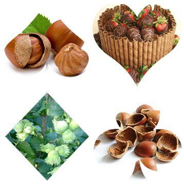 Get to Know Hazelnut Shelling