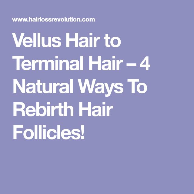 Vellus Hair to Terminal Hair – 4 Natural Ways To Rebirth Hair Follicles!