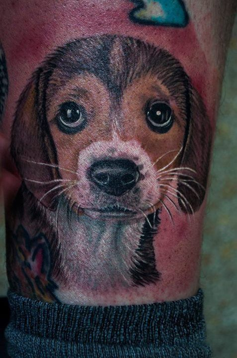 olio.tattoo Little Puppy Tattoo by Devin from Lost Time Tattoos - Alum Creek, WV #little #puppy -- More at: https://olio.tattoo/tattoo-images/mentions:little