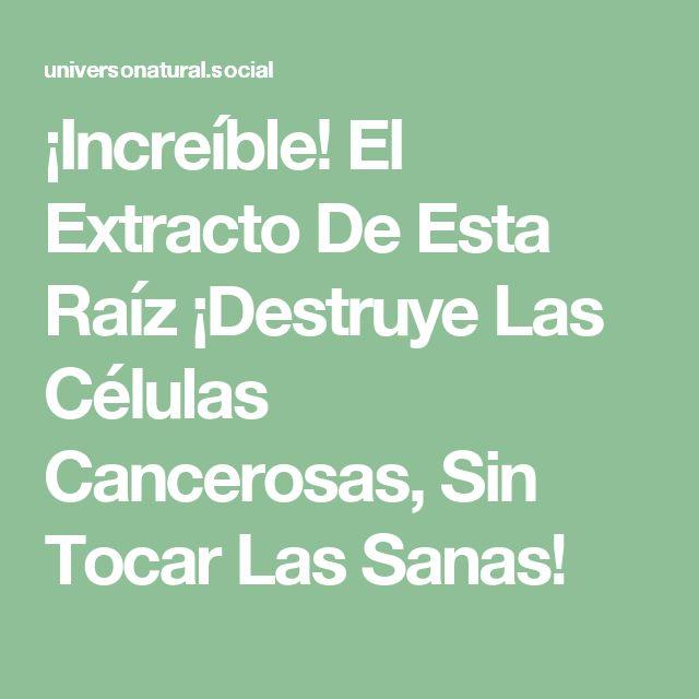 ¡Increíble! El Extracto De Esta Raíz ¡Destruye Las Células Cancerosas, Sin Tocar Las Sanas!