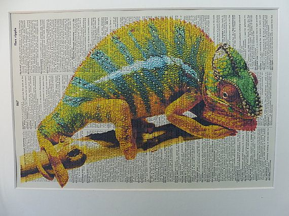 Chameleon Dictionary Wall Art Print No.383 the by DecorisDesigns