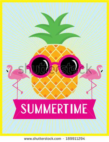 pineapple and flamingo summertime vector/illustration template