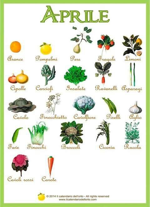 Il calendario dell'orto: cosa comprare e mangiare ad aprile