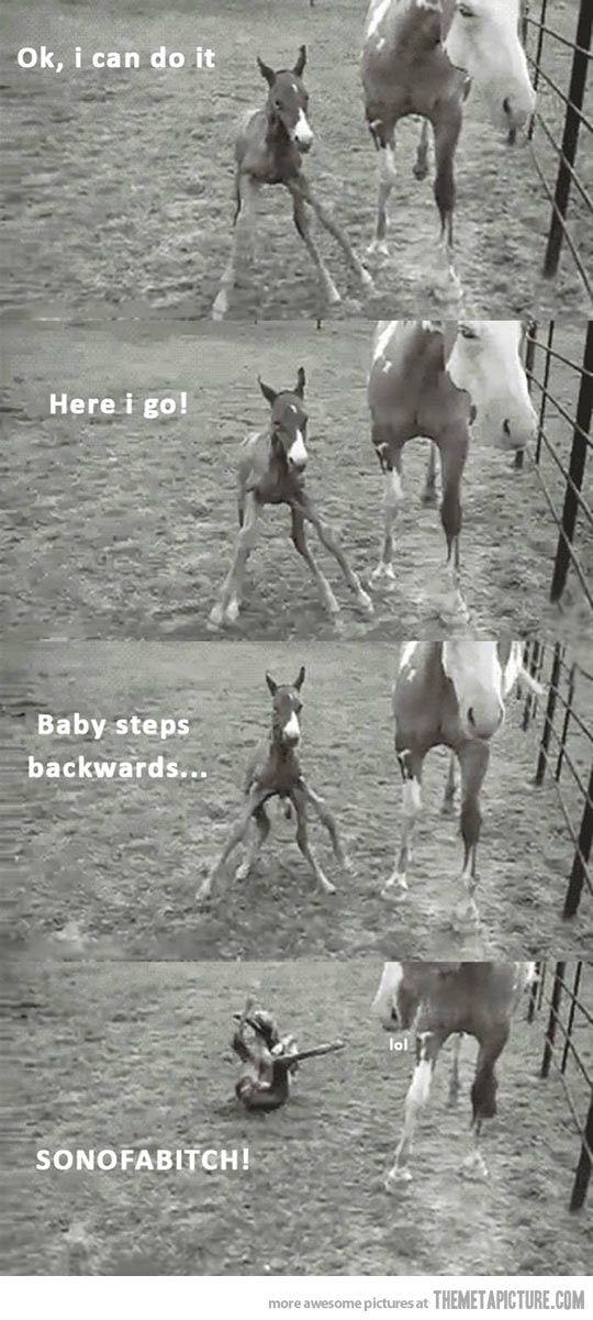 Baby steps backwards…