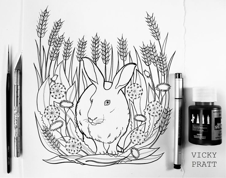 By Vicky Pratt. Hare and dandelion flowers. Black pen and ink. Find me on Facebook and Instagram. www.vickyprattillustrations.com
