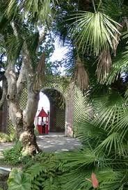 Jardin botánico tenerife