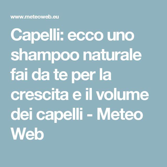 Capelli: ecco uno shampoo naturale fai da te per la crescita e il volume dei capelli - Meteo Web