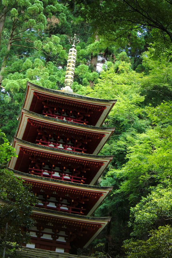 The five-storied pagoda of Murō-ji #Nara #japan