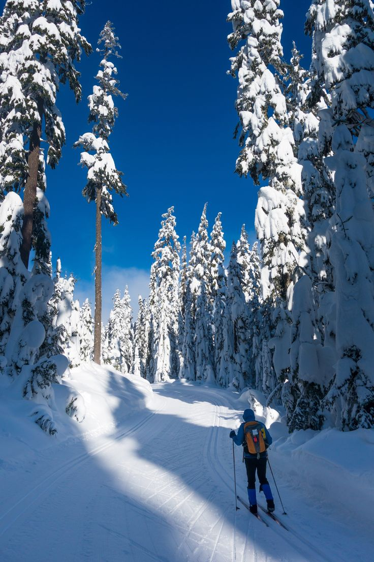 #LL @LUFELIVE #thepursuitofprogression Nordic Skiing at Snoqualmie Pass