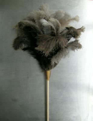 Perhaps she would have used this.  The feather duster was considered a status symbol around this time much like a library or a bell for the servants.