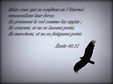 Esaïe 40 v.31
