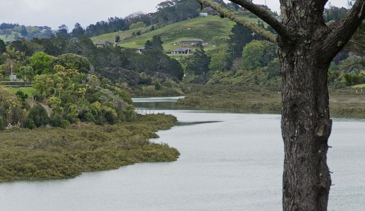 Weiti River, Auckland, New Zealand