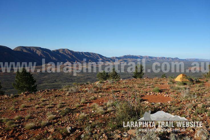 Mount Giles Lookout Campsite. Section 9. Image looking NE.© Explorers Australia Pty Ltd 2014