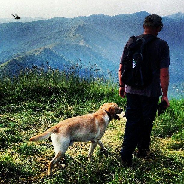 Photo by visueye - Spot the Fly - een mooie wandeling met vergezichten onder deskundige leiding van A Smit ☼