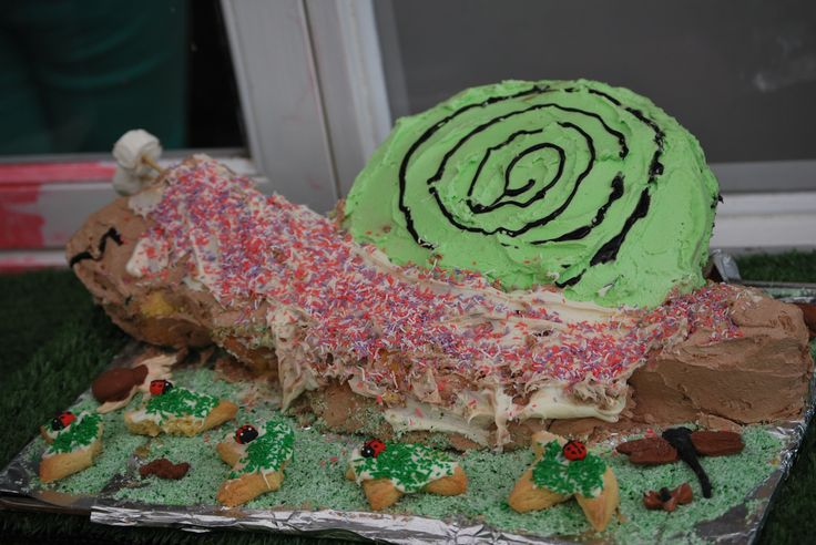 Snail Cake for my daughters 3rd birthday.  #Snailcake #insectparty http://masadamum.blogspot.com.au/