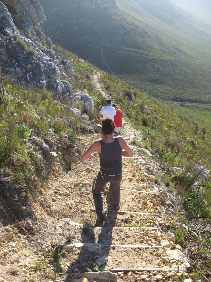 How about a nice hike in Fernkloof Nature reserve.  This start to this walkway is at the end of our street.