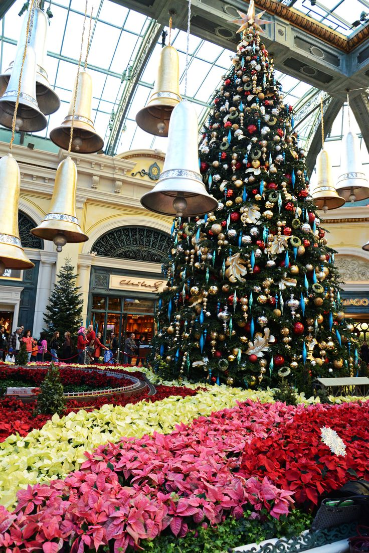 21 best bellagio conservatory christmas trees images on for When does las vegas decorate for christmas