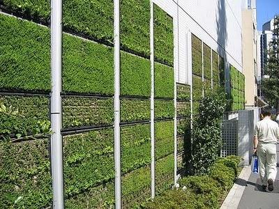 Vertical Garden Designs On Vertical Garden Solutions In Narrow Area Home  Design Inspiration | Gardening | Pinterest | Vertical Garden Design, ...