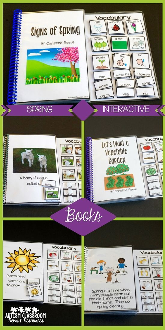 5 Spring Interactive Books...already adapted to address pictures and/or words. 1 book of photos, 1 book of verbs, 3 books of nouns or nouns and verbs. $
