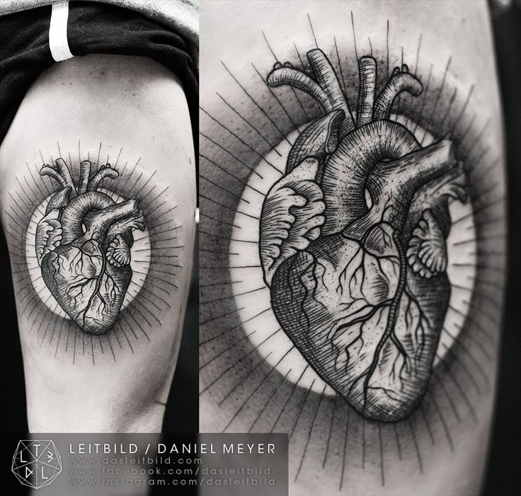 I can't wait to have my realistic heart tattoo someday! Heart Linework Tattoo by Daniel Meyer.