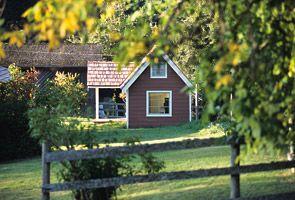 Foxglove Farm website
