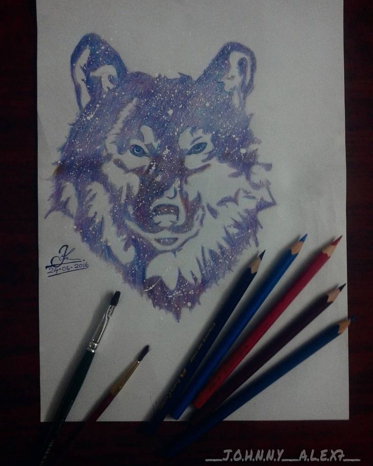 #25 #Double exposure drawing..combined a #galaxy  into a #wolf !! #creativeart #aesthetic #drawingoftheday #galaxyart#artsgallery#illustration#young_artist_help #designwork