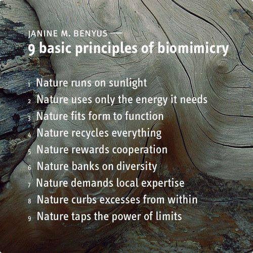 9 principles of Biomimicry...#Nature