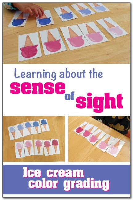 Sense of sight activity for kids: Learn about the sense of sight with books and a free printable activity where children practice ordering ice cream cones by color from lightest to darkest #freeprintable || Gift of Curiosity