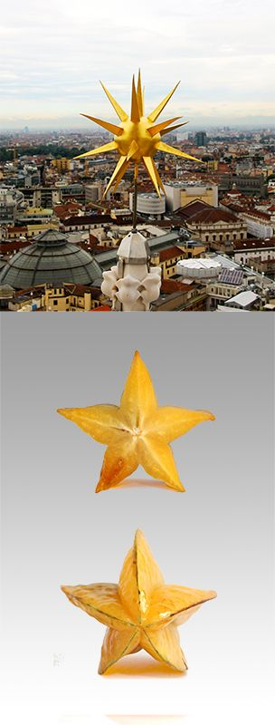 It's not difficult to recall a #starfruit in the golden shape of this little star on the top of the #milancathedral #duomodimilano #food #duomofood
