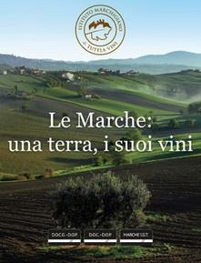 Le Marche: una terra, i suoi vini - liBook