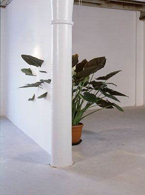 »Elephant's Ear« is an installation in which a plant leaf grows through a wall; a piece of the plant is encased within the wall. By Ruben Bellinkx