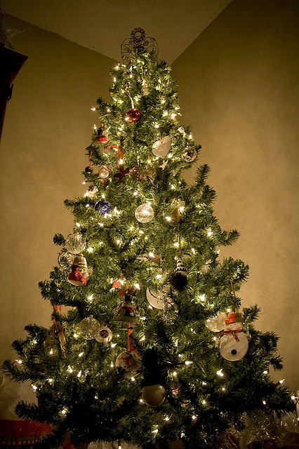How to Take Great Pictures of Your Christmas Tree  #christmas #christmastree #photography