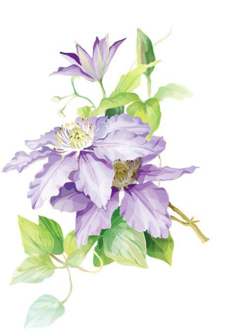 flowers watercolour painting - Szukaj w Google