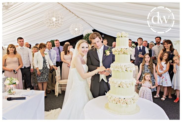 Cake cutting at Chippenham Park, Cambridgeshire