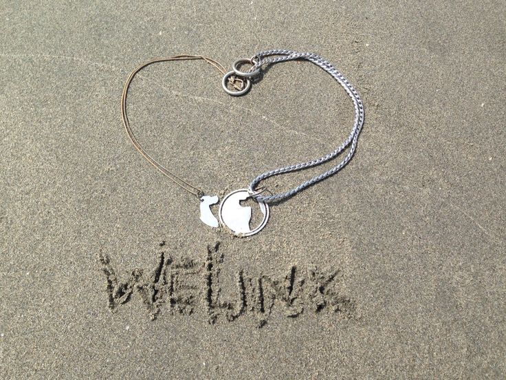 BFF necklace/tag for pets and owners
