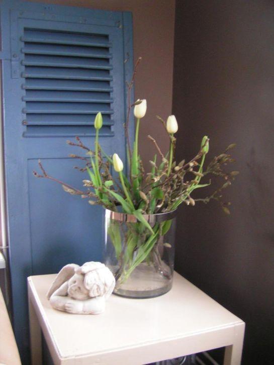 magnolia takken en franse tulpen
