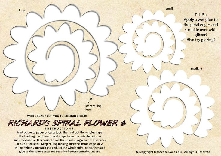 rolled paper roses template - 61 best templates images on pinterest