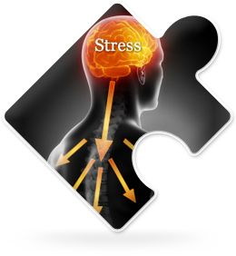 What is Stress Illness?