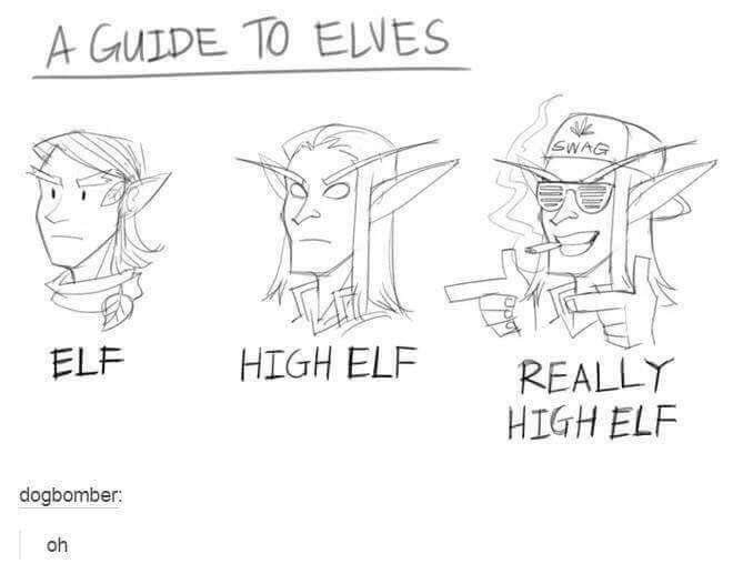 A guide to Elves in Skyrim