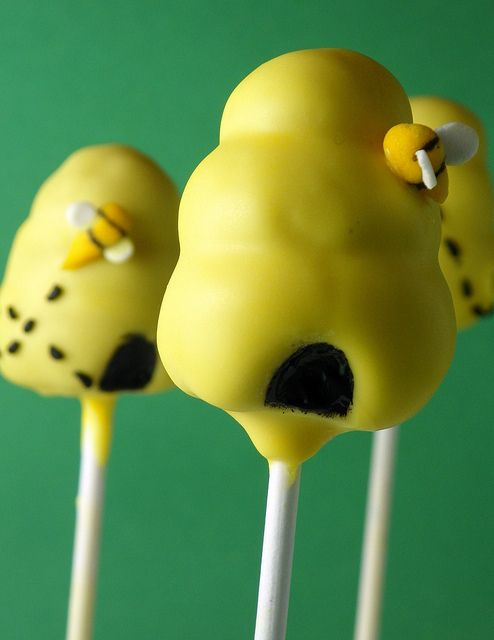 Bee Hive Cake Pops | Flickr - Photo Sharing!