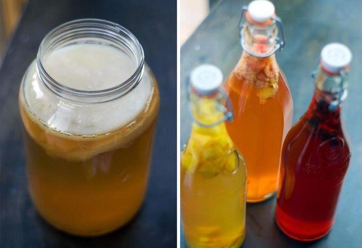Découvrez comment fabriquer du kombucha avec une mère (scoby), un peu de sucre et des arômes de votre choix, à la maison!
