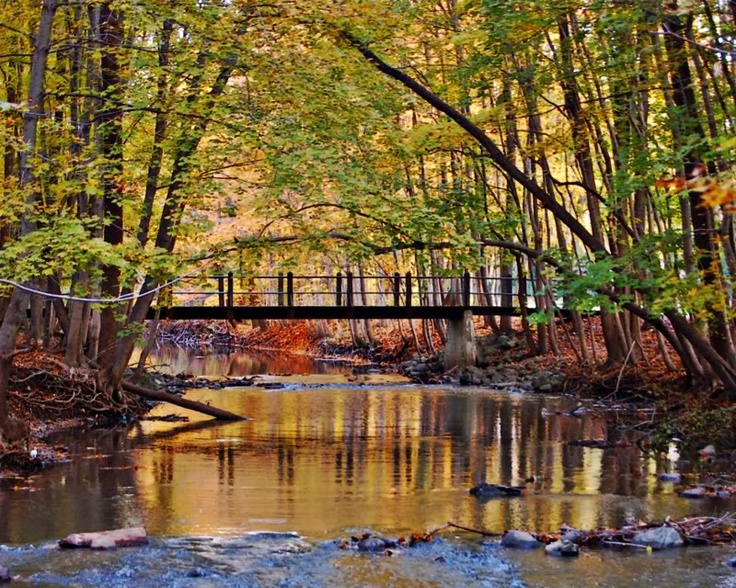 petrified springs park in Kenosha ,WI (heard this is a nice park, want to go there soon!)