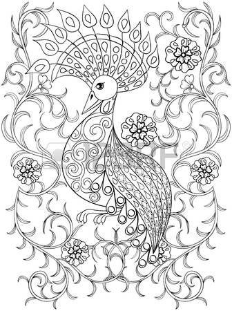 Coloriage avec des oiseaux dans les fleurs, zentangle oiseau illustartion pour les livres � colorier adultes ou des tatouages ??avec d�tails �lev�s isol� sur fond blanc. Vector monochrome croquis d'oiseaux exotiques. photo