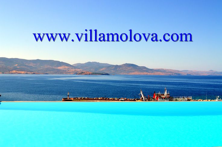 Good morning we have a meeting of fresh and salty water, today! #VillaMolova