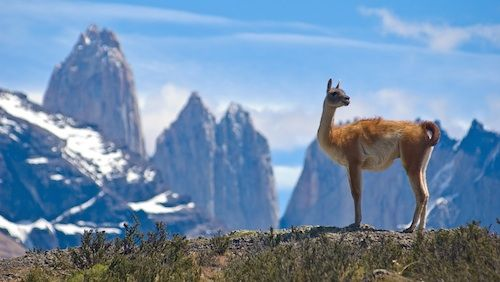 Read our Argentina Facts for Kids and enjoy your travels