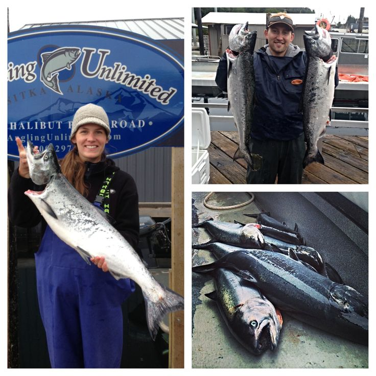 Sitka fishing report 5/14: Members of the AU crew explored the waters north of town Tuesday in search of king salmon. Read how they did in our latest Sitka fishing report! #alaska #fishing